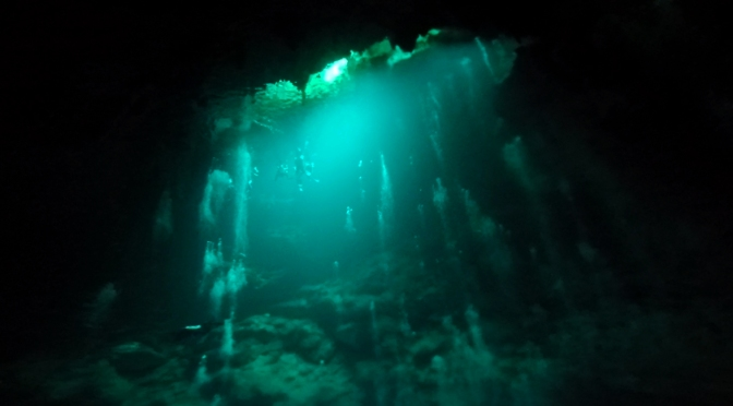 Ever Wondered What it's Like To Dive in a Cavern or a Cave? (Video)
